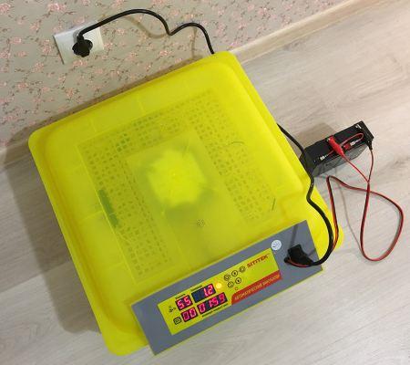 Инкубатор в действии с подключенным опциональным аккумулятором
