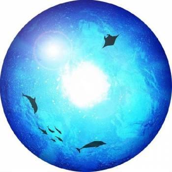 Диск проекционный Homestar lite Под водой