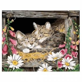 Картина по номерам Котята в гнезде размер 40x50 (арт. GX5606)
