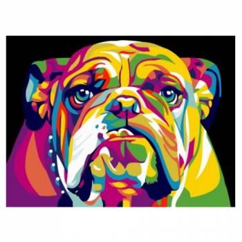 Картина по номерам Радужный американский бульдог размер 30x40 (арт. EX5371)