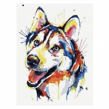 Картина по номерам Разноцветный щенок размер 30x40 (арт. ME1091)