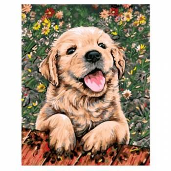 Картина по номерам Веселый щенок размер 40x50 (арт. GX5607)