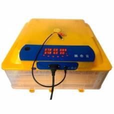 Инкубатор автоматический WQ-48 (220V и 12V)