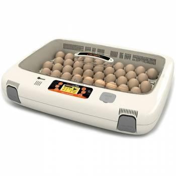 Инкубатор цифровой автоматический Rcom 50 Pro