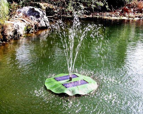 Согласитесь, с  декоративным фонтаном водоем имеет совершенно другой вид! (кликните для увеличения)